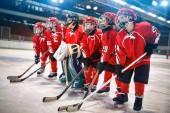mladého hokejisty - děti hrát lední hokej