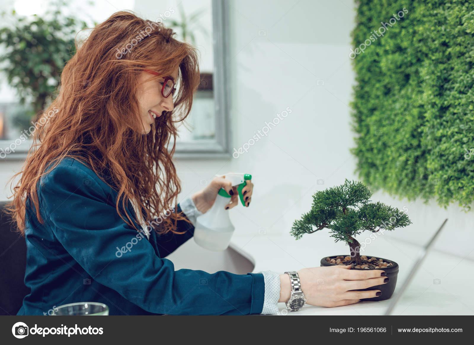 Young Businesswoman Spraying Water Bonsai Tree Smiling Stock Photo C Milanmarkovic 196561066