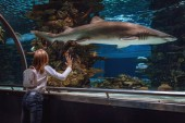 Young girl standing outstretched against aquarium glass fascinated by the shark.