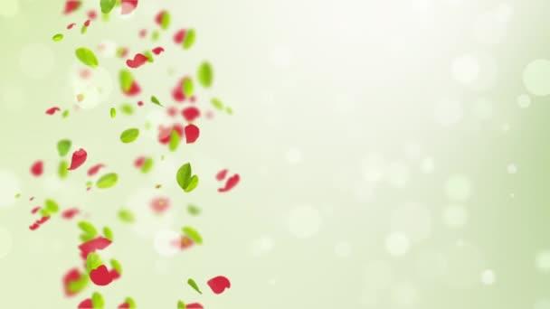 Jarní pozadí se zelenými listy bokeh petal a ptáci
