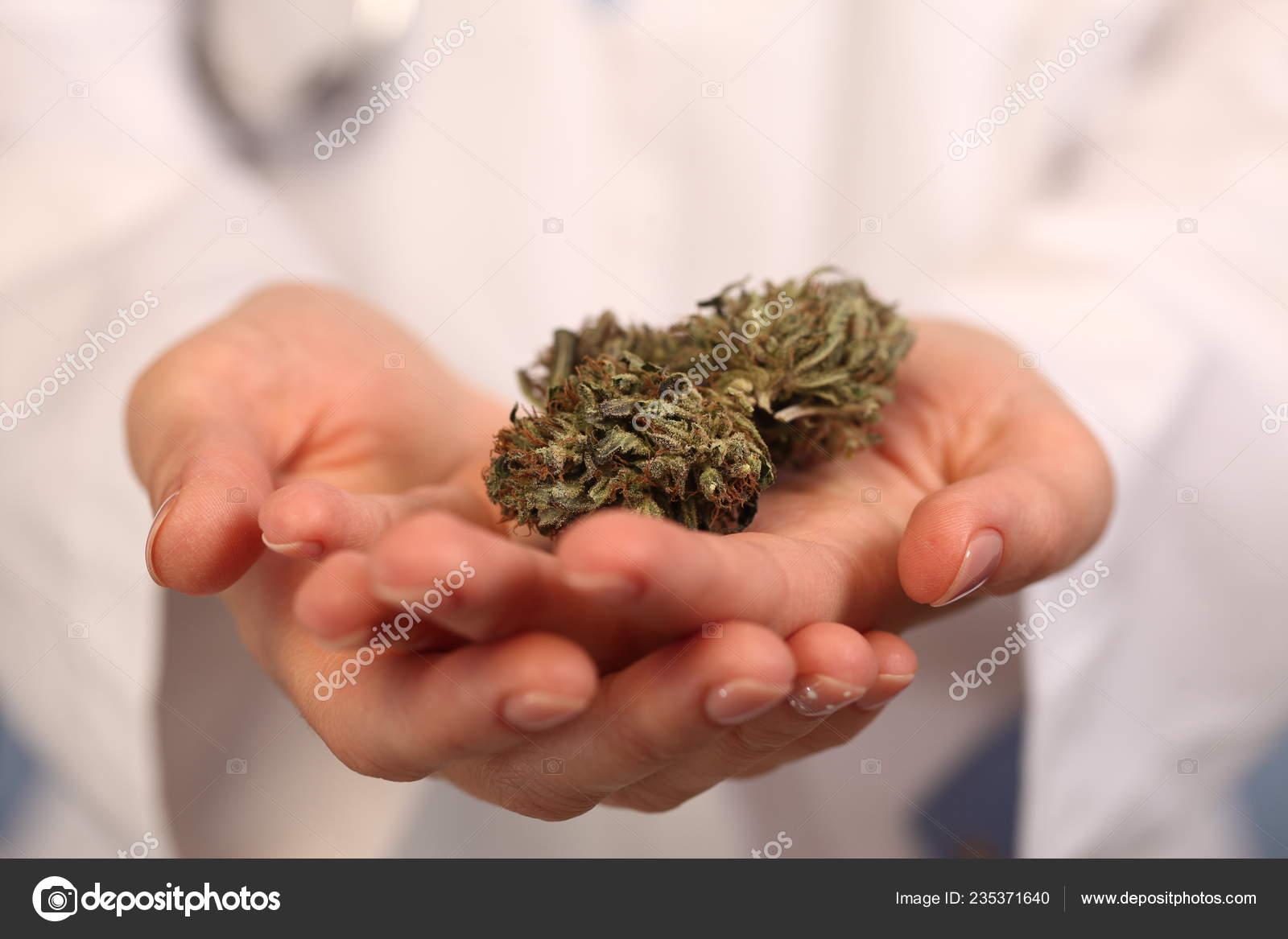 Medical Marijuana Hand Doctor Cannabis Alternative Medicine