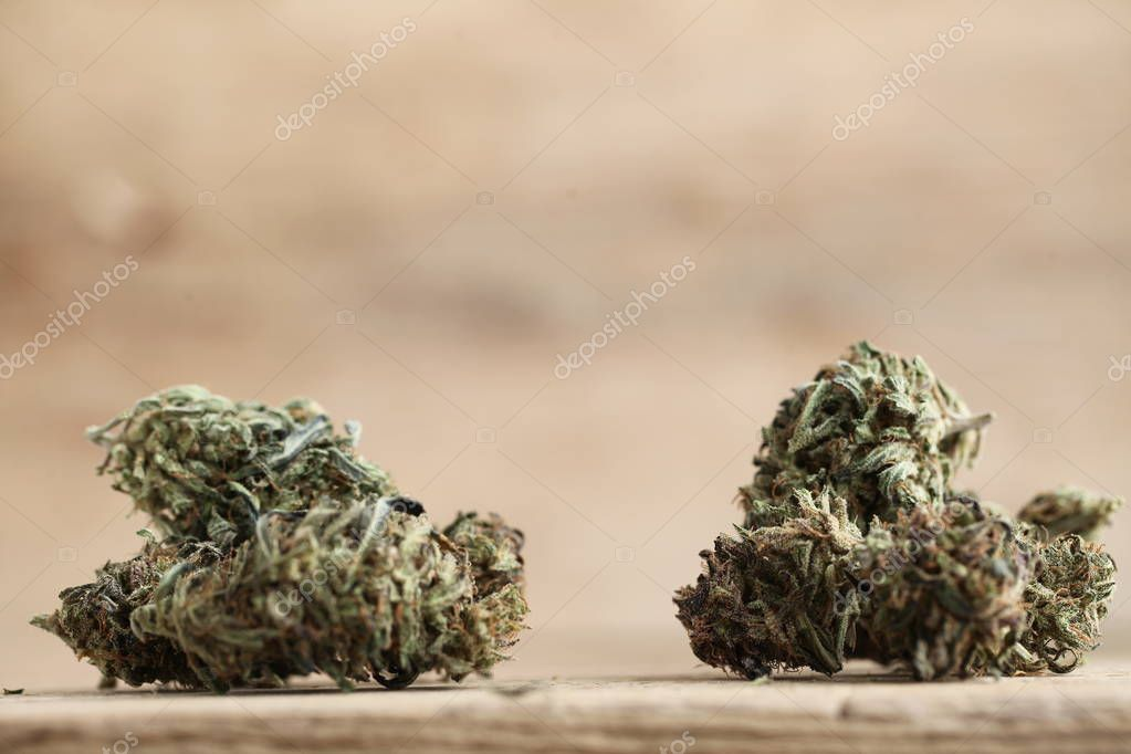 cannabis business concept. Medical Marijuana