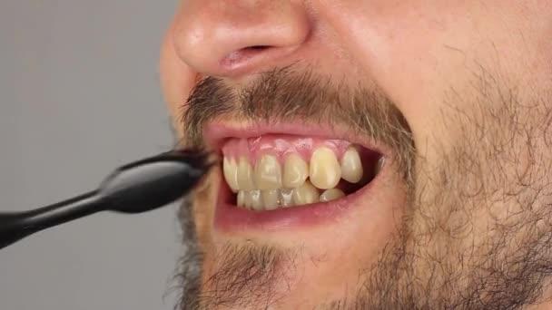 oldalnézet ember száj, szakáll és bajusz alaposan ecset fogai mozgások fentről fentről lefelé és lentről tetejére, gumi masszázs, closeup, fekete fogkefe fogkrém nélkül