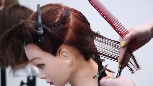 beginner hairdresser simulates hair cutting with scissors on a mannequin head, practices new skills, training at hairdressing workshop, learning new profession, side view