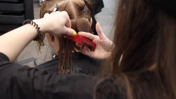 stylist gently combs hair on woman head and cuts with scissors, practices new skills at hairdressing workshop, close-up view