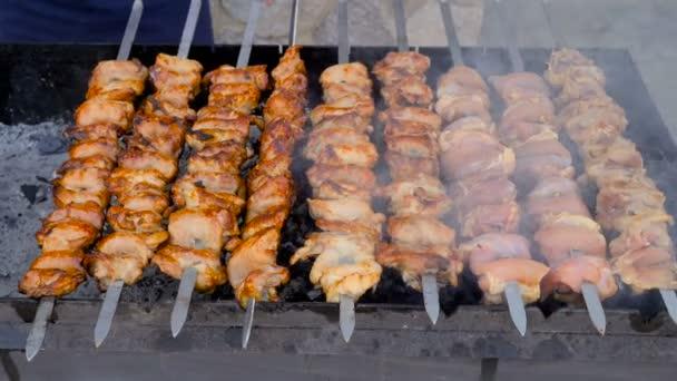 Barbecue kebab z rozmanitých hovězí maso jehněčí kuře s grilovaným masem. Pohyb kamery v boku 4k