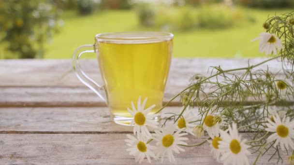 Glass cup of chamomile tea