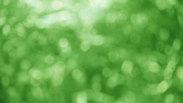 Koncentrált zöld elvont jó a természet vagy a környezeti háttér