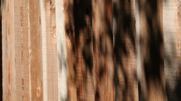 ein Holzzaun mit überhängenden Schatten der Gliedmaßen
