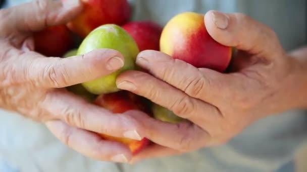 Vezető ember ellenőrzi a friss gyümölcsöt a kezében