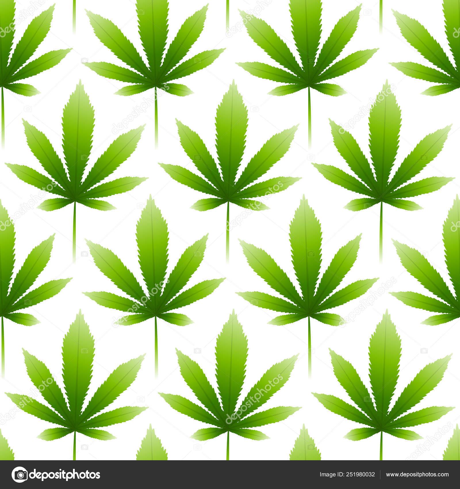 Ошо конопля мальборо с марихуаной фото
