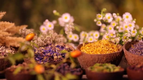 Variety of aromatic spices and herbs on kitchen table