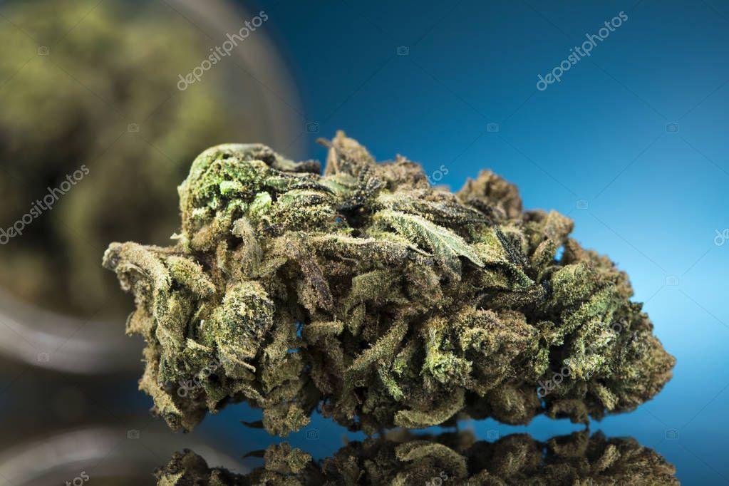Cbd Concept, Medical Marijuana, cannabis and blue background