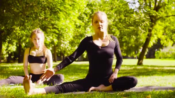 Jóga. Dvě atraktivní žena, která dělá jógu exersices v parku