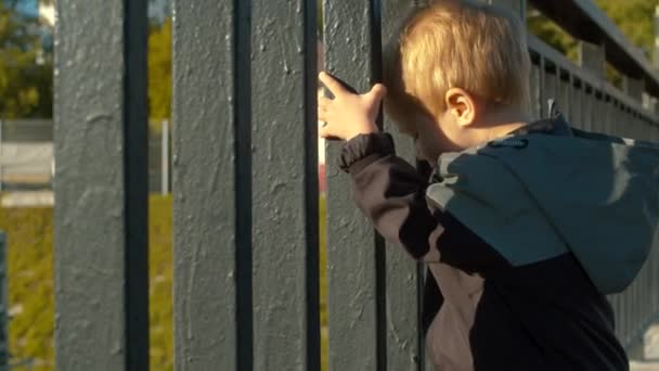 Child standing near the fence