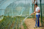 csinos farmer öntözés növények üvegház