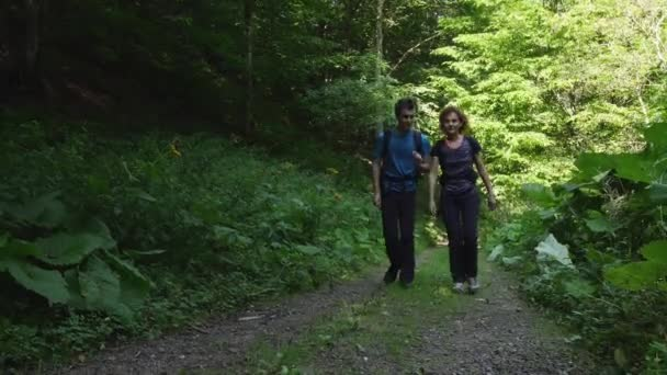 Family of hikers walking in green summer forest at daytime
