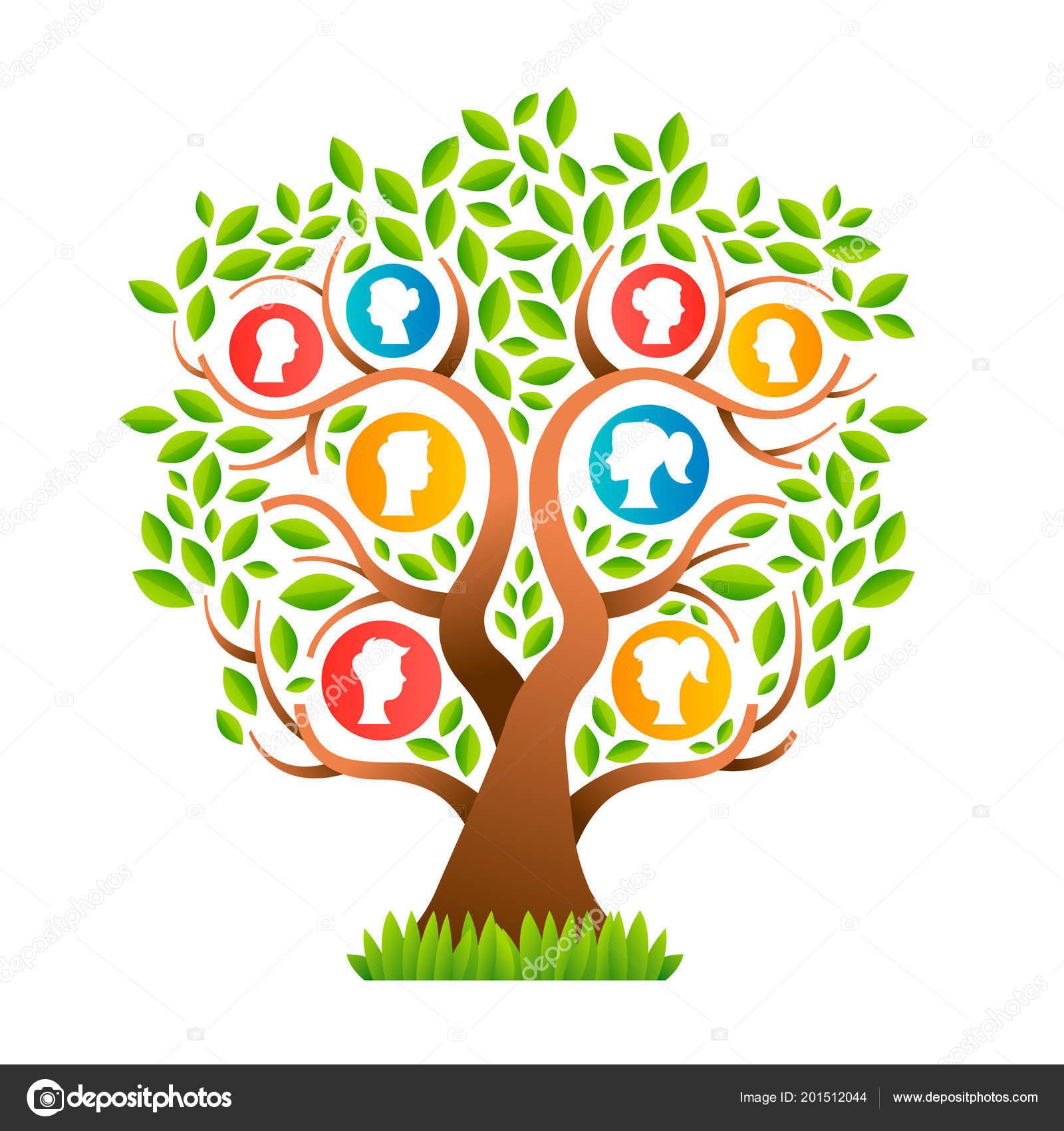 árbol Genealógico Plantilla Concepto Con Los Iconos Personas Diseño