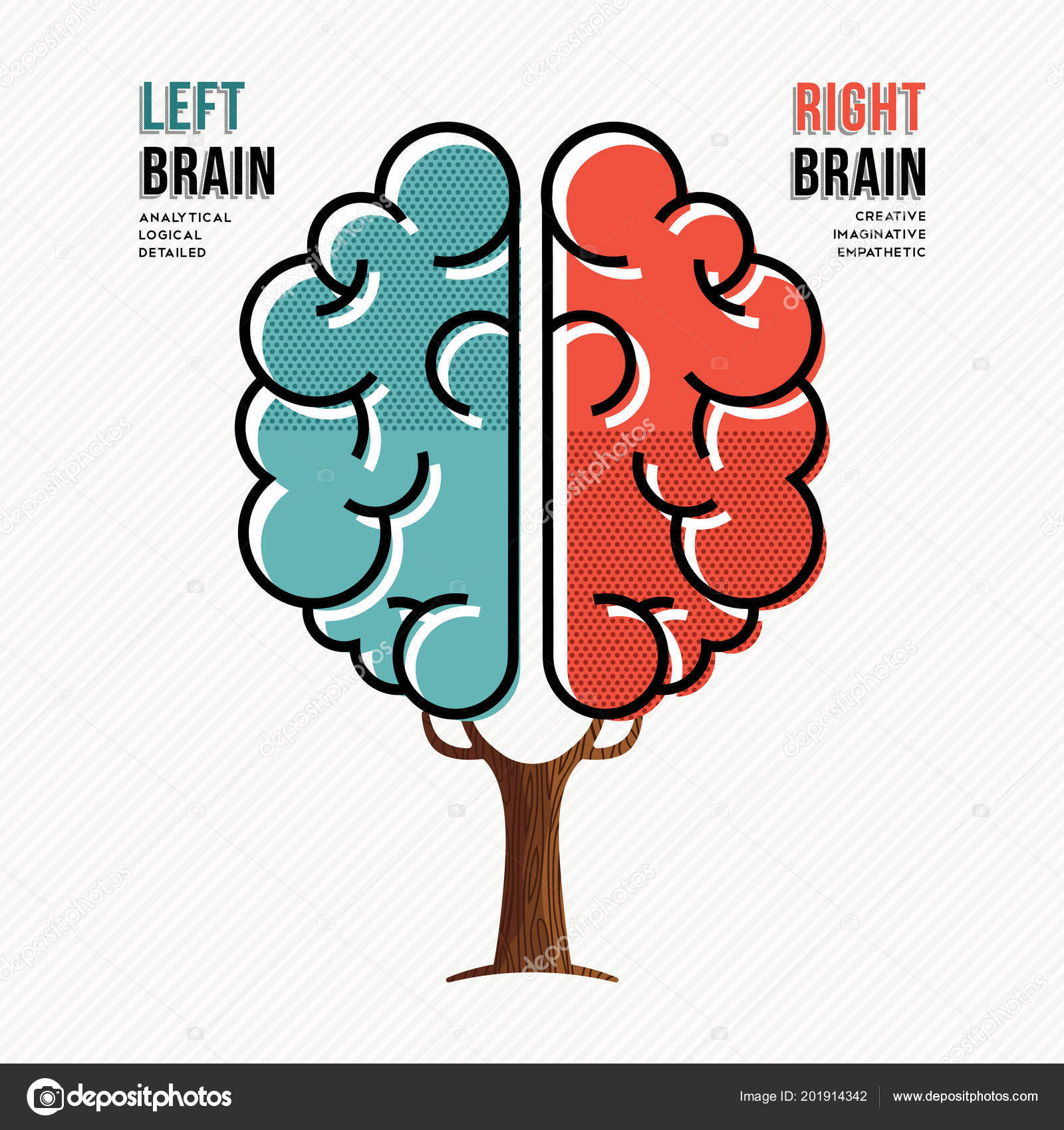 Concept Illustration Human Brain Hemispheres Information Left Right