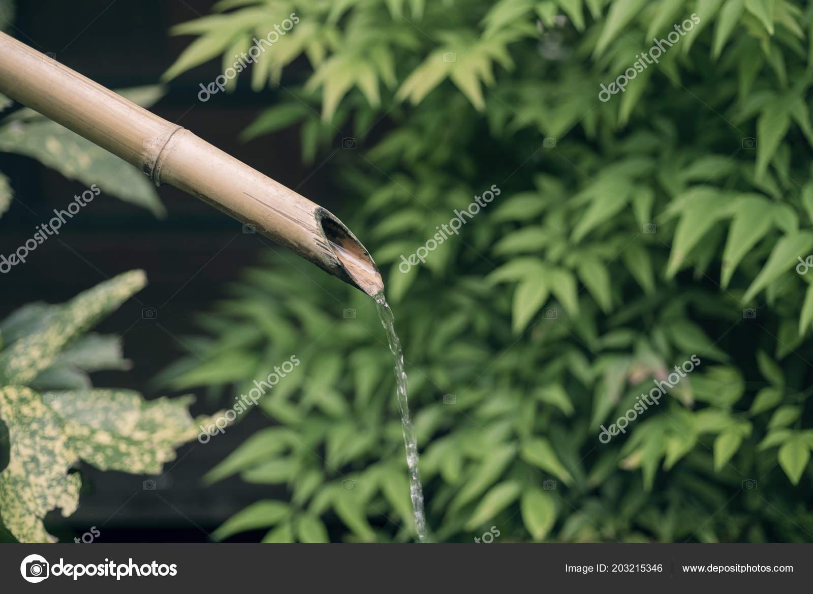 Bambus Brunnen Giesst Wasser Auf Grunen Hintergrund Traditionelle