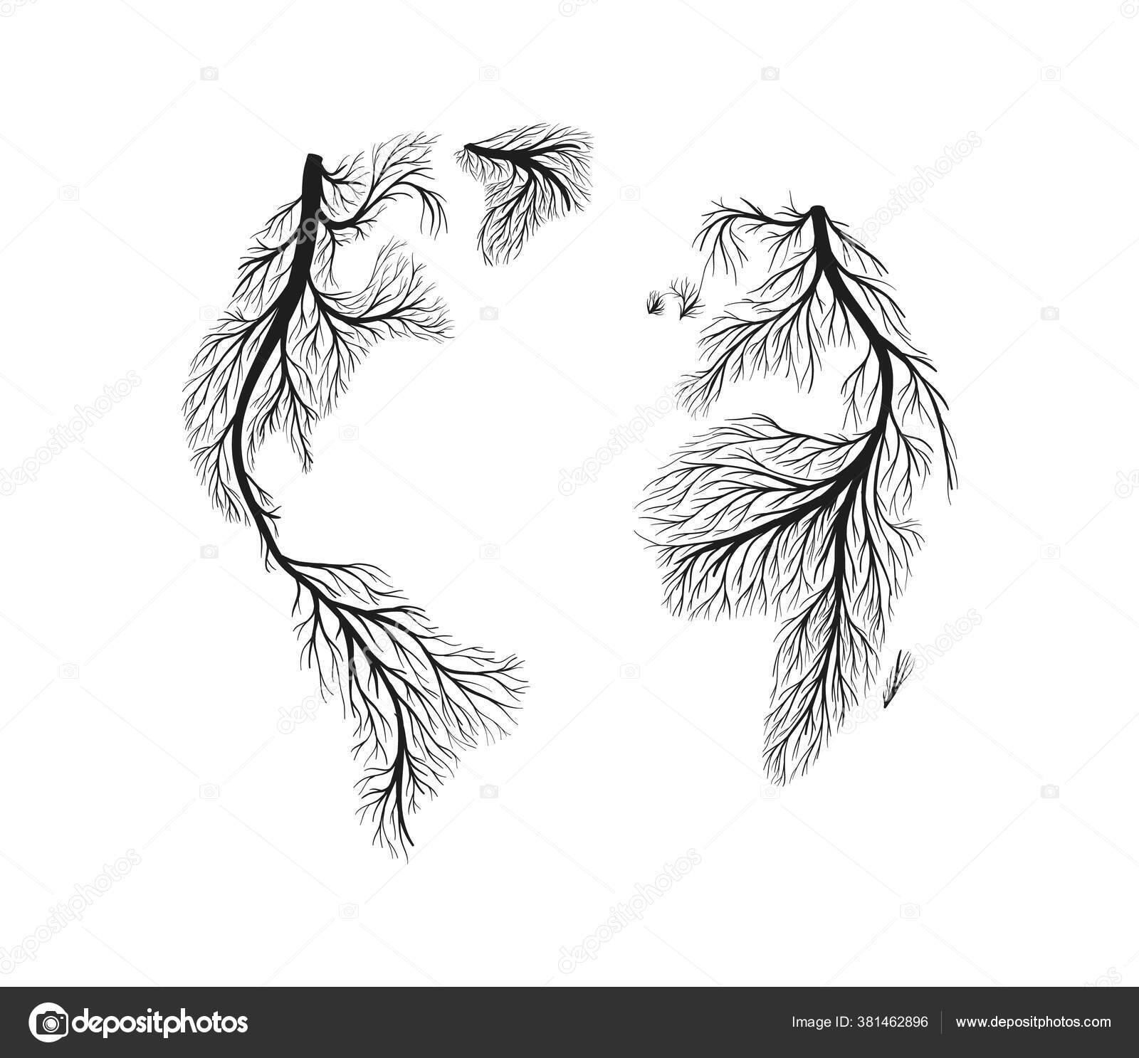 Peta Dunia Yang Terbuat Dari Akar Pohon Gambar Tangan Pada Stok Vektor C Cienpies 381462896