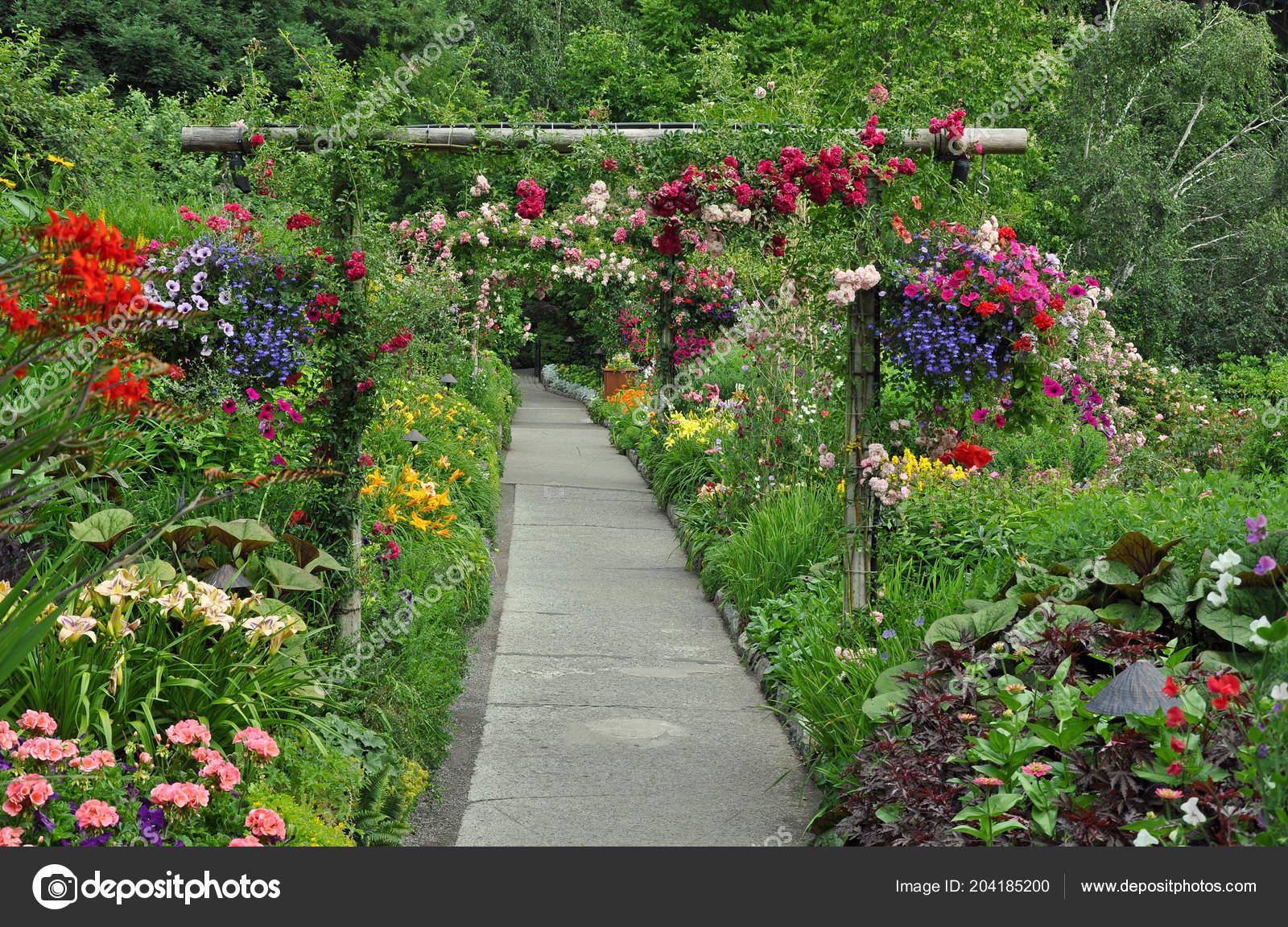 Chemin Jardin Jardin Ete Belle Photographie Montana