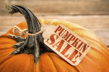 pumpkin sale price tag - Halloween or Thanksgiving holiday shopping concept