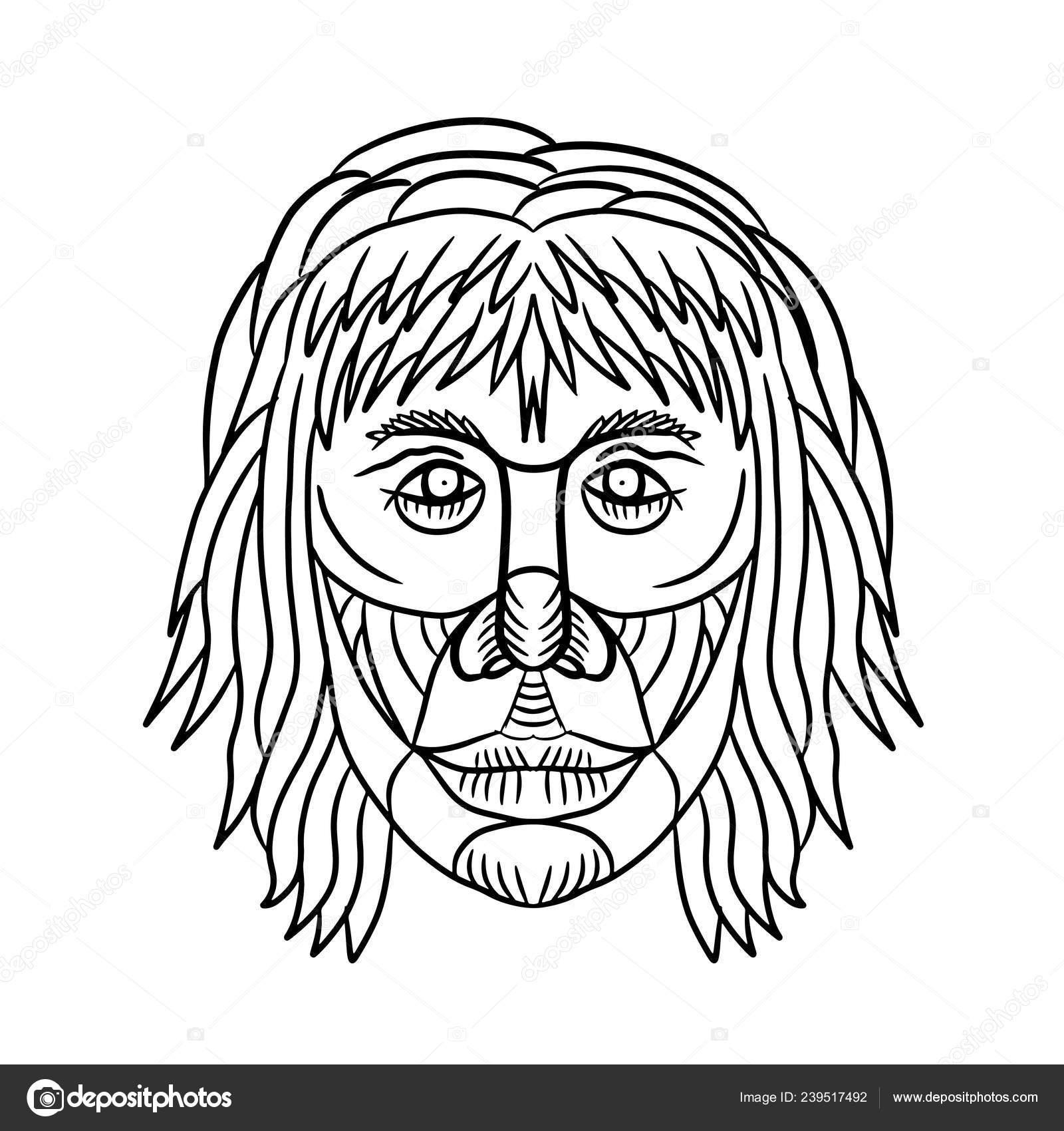 Dessin Croquis Style Illustration Visage Homo Habilis Des