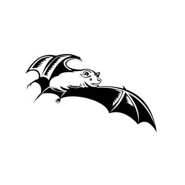Retro woodcut style illustration of a megabat, fruit bat, old world fruit bat or flying fox, in full flight on isolated background done in black and white.