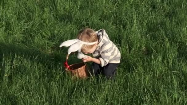 Cute little kid with basket on Easter day. Toddler boy in bunny mask hunts for Easter eggs on the lawn in nature. Easter celebration. Slow motion.