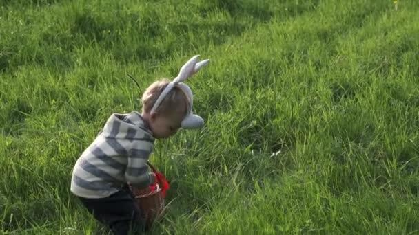 Die Kamera folgt einem kleinen kaukasischen Jungen mit Hasenohren und Korb, der bei der traditionellen Ostereiersuche in Zeitlupe bunte Eier im Gras findet. Osterfest-Konzept.