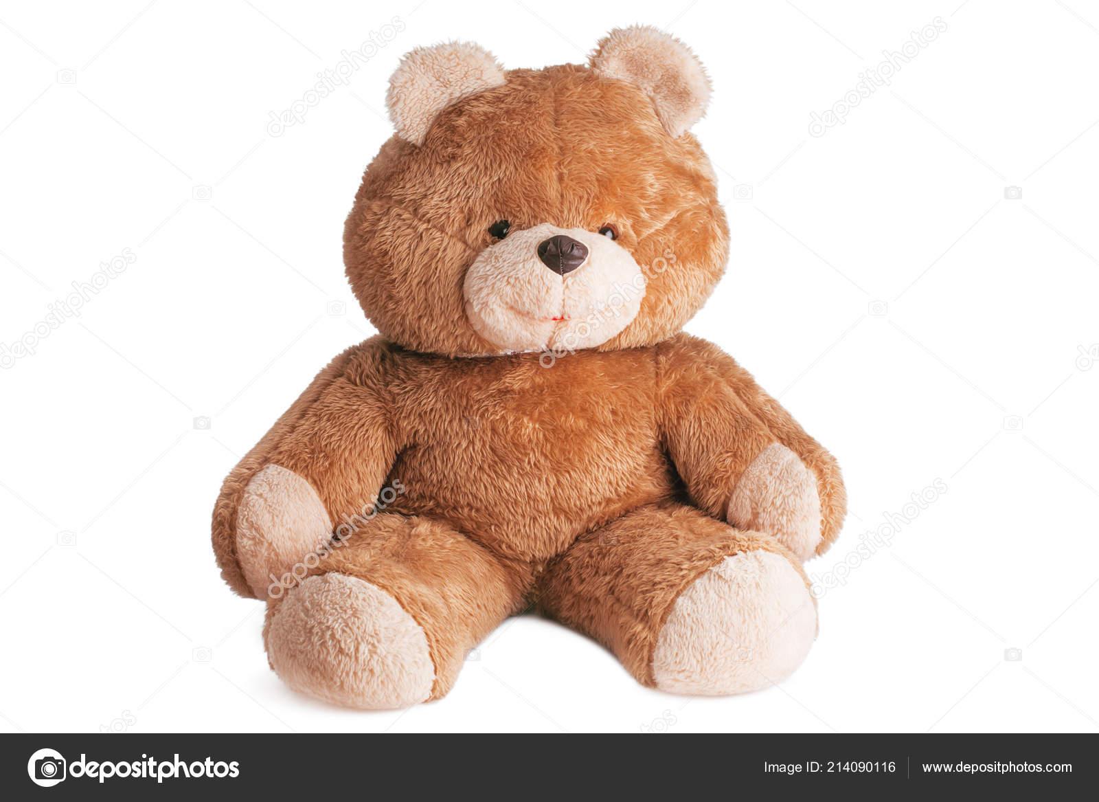 Hay Hay Chicken Stuffed Animal, Big Fluffy Teddy Bear Toy Isolated White Background Stock Photo C Valio84sl 214090116
