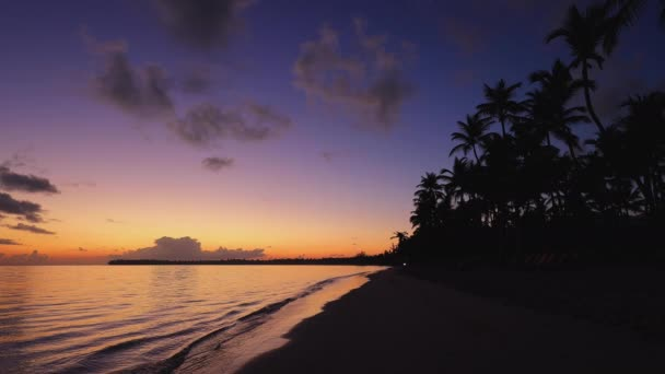 Sunrise over tropical island beach and palm trees. Punta Cana, Dominican Republic.