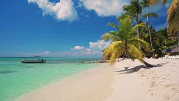 Egzotikus strand pálmák körül. Ünnep-és nyaralás fogalmát. Trópusi sziget.