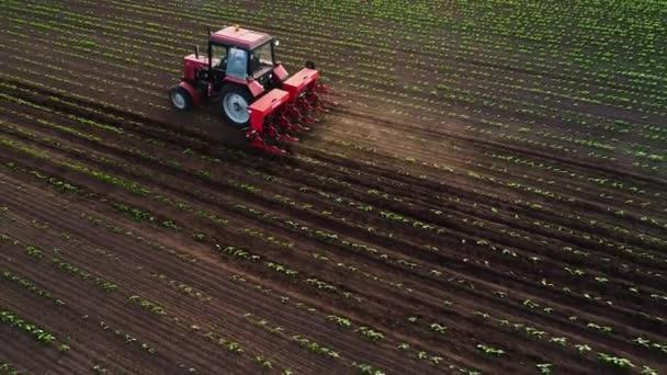 Traktortermesztő mező tavasszal, légi naplemente nézetben