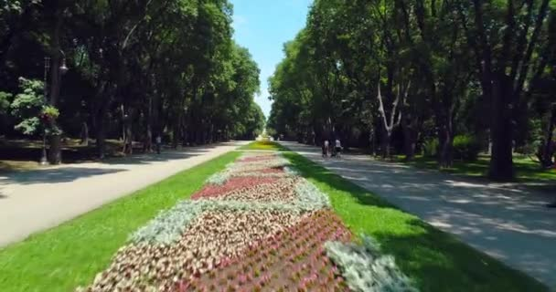 Varna Bulgaria, aerial view of sea garden park with colorful flowers, alleys, benches and happy people