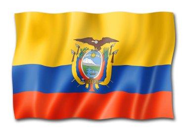 Ecuador flag, three dimensional render, isolated on white