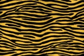 Tiger fur background texture