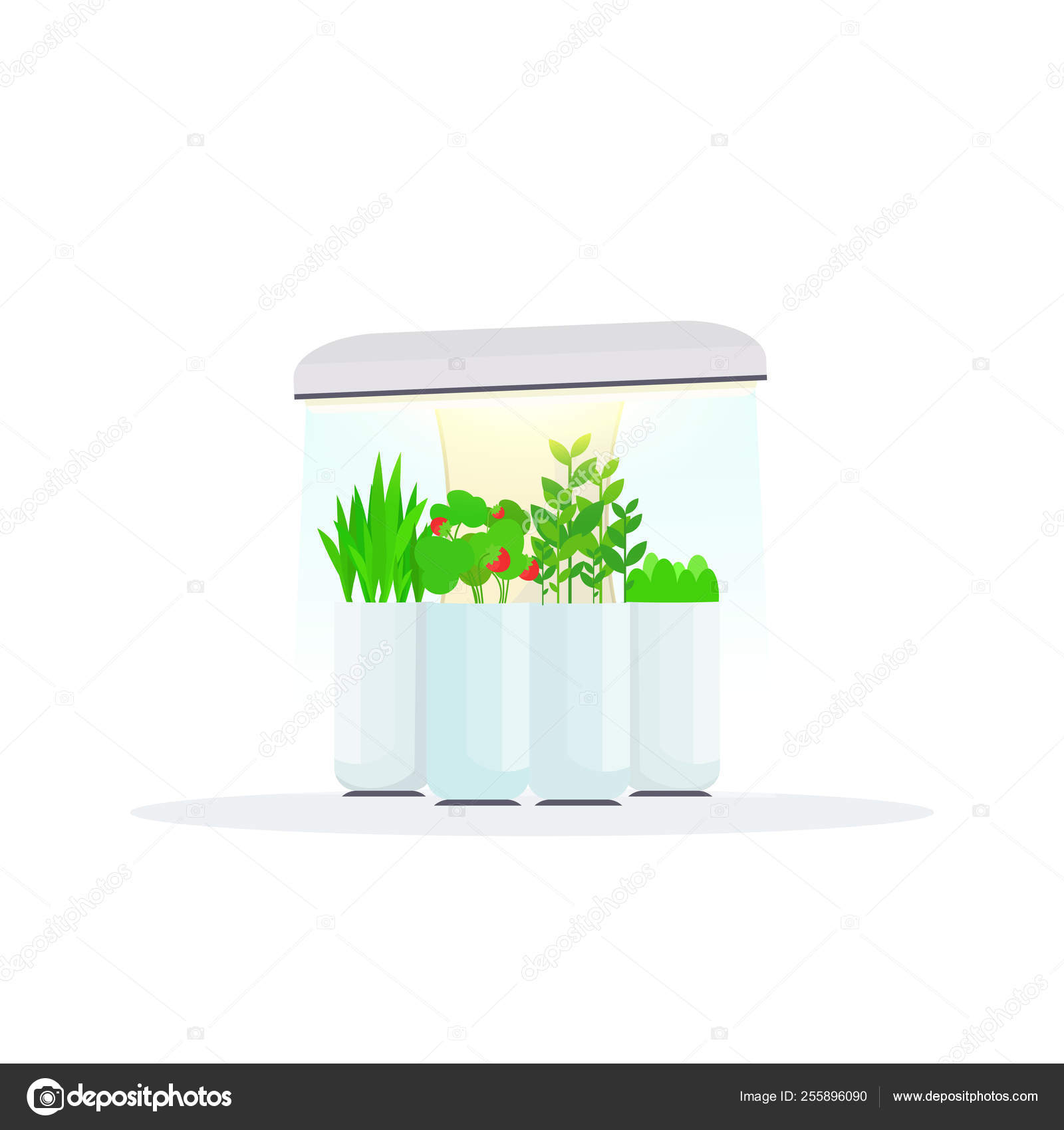 Modern Indoor Fruits And Vegetables Garden Digital Greenhouse Electronic Terrarium Farm Glass Container Eco Farming House Plants Growing Concept Flat White Background Stock Vector C Mast3r 255896090