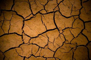 Dry land. Cracked ground background.