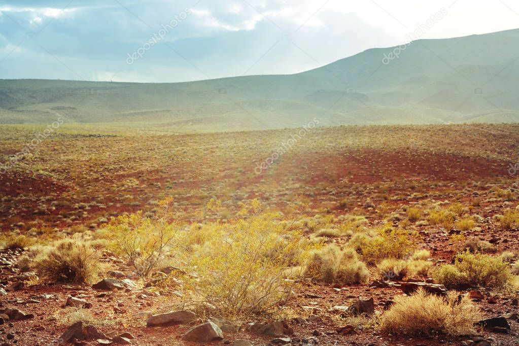 American landscapes  scenic view