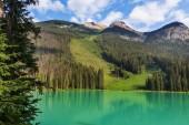 Serenity Emerald Lake in the Yoho National Park, Canada.