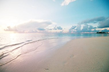 Maldives beach nature scenic view stock vector