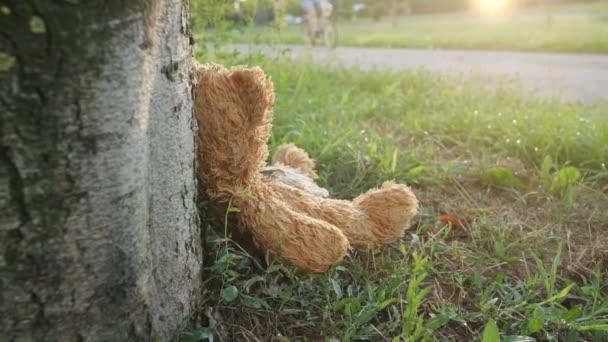 Szerencsétlen elhagyott kint hajlik, hogy a fa mackó