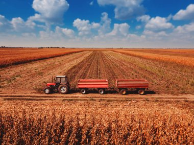 Aerial view of agricultural tractor with cargo carts in field loaded with harvested corn kernels