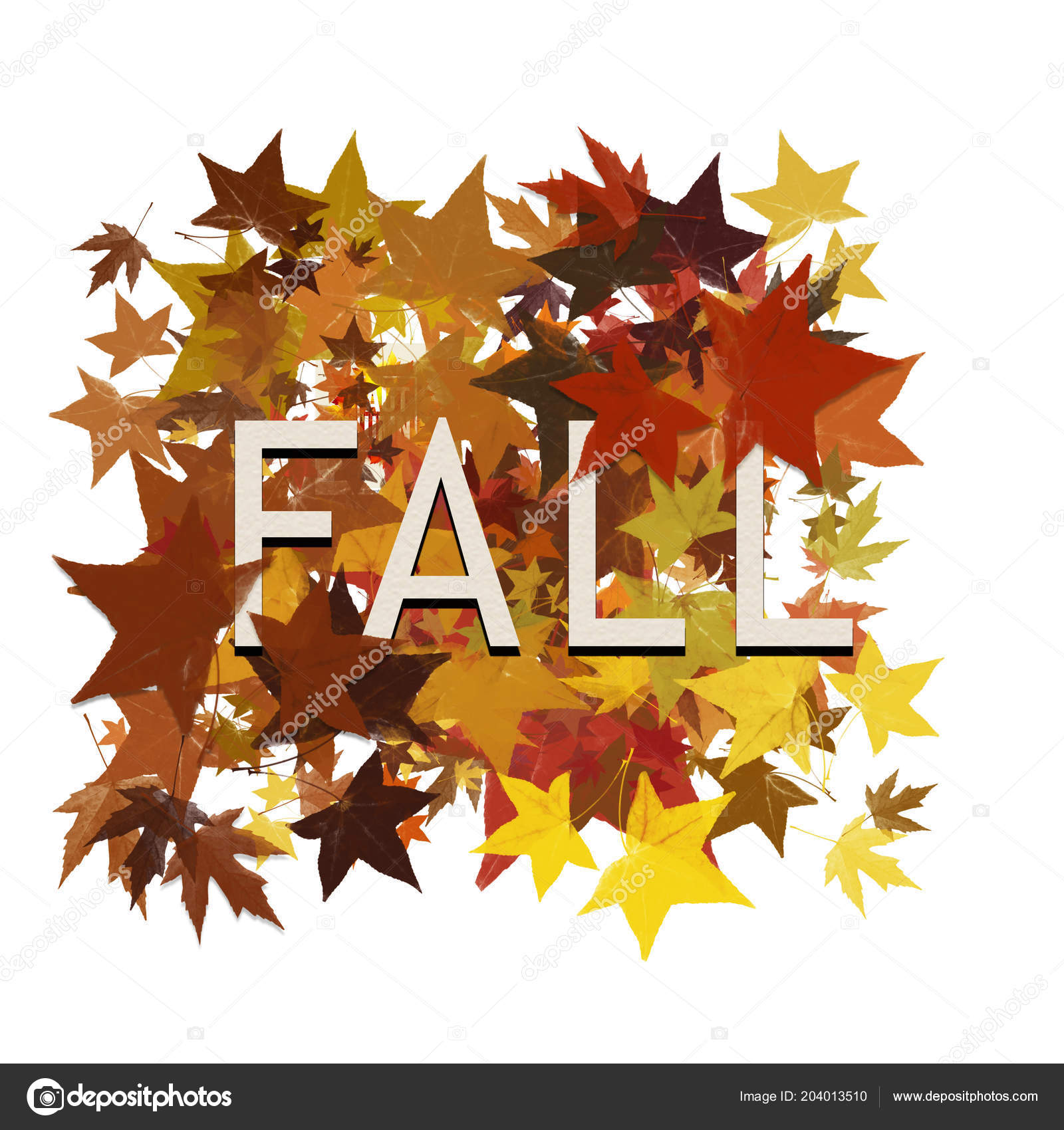 autumn leaves with the word fall isolated on white stock photo