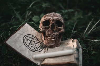 Opened black magic book with occult symbols and human skull on the grass in forest. Exorcism and supernatural rituals