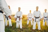 Photo Karate fighting team in white kimono on training with master in summer field. Martial art workout outdoor, technique practice