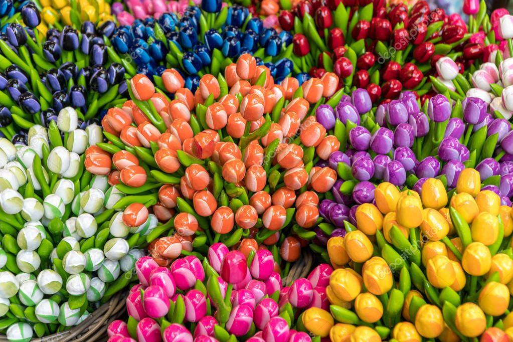 Group of colorful wooden tulips, Netherlands