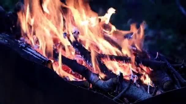 Helle Zungen heißer Flamme im Kohlenbecken